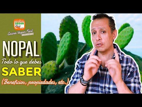 Nopal, todo lo que debes saber - Cocina Vegan Fácil