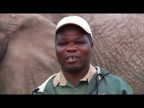 Geoffrey & Mark Malawi.mov