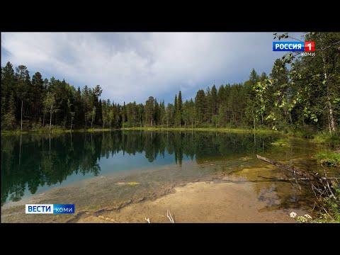 Природный заказник «Параськины озера» в Ухтинском районе получил статус федерального