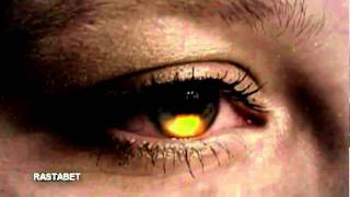 Pink Floyd - The Final Cut - Solo - Video HD.flv
