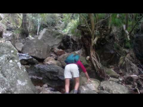 Josh/EJ – Table Mountain in Cape Town, South Africa Hike #7