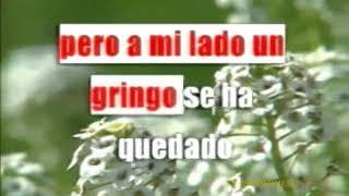 LOS NSQ Y LOS NSC - LOS PATOS Y LAS PATAS ((KARAOKE//NO VOZ))