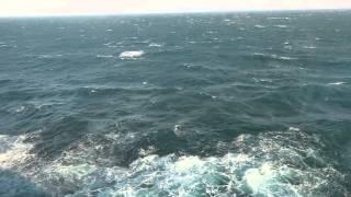 laufuman(rough sea)