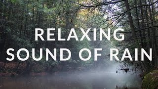 2 Minutes Relaxing Sound of Rain | Destress and relief | Nature Sound