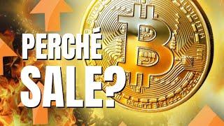Perchè il Bitcoin sale?