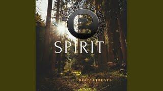 Spirit (Original Mix)