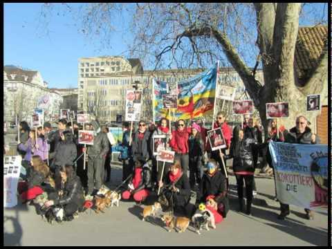 Demo in Zürich 14.1.2012