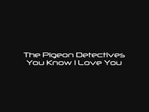 the-pigeon-detectives-you-know-i-love-you-l33tskyline