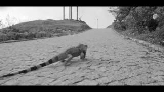 julien Dore-Coco Caline [Alternative Video]