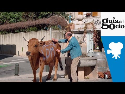 La vaca ( La vache ) - Trailer español