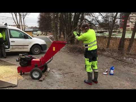 Röjning och plantering vid Åkers kanal