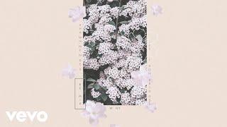 Shawn Mendes - Why (Remix / Audio) ft. Leon Bridges