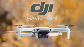 vidéo test DJI Mavic Mini par Steven
