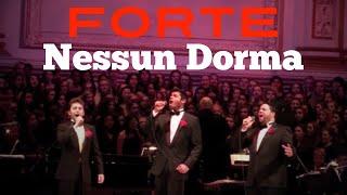 Forte - Nessun Dorma - Carnegie Hall Debut