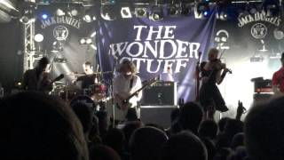 The Wonder Stuff - Size Of A Cow Live at Concorde 2, Brighton, 5 March 2016