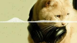 Annella - Bass Me Baby