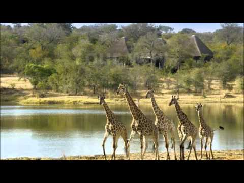 Boutique Kruger at Chitwa Chitwa – Gay  and lesbian Travel –  www.exclusivelypride.net