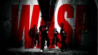 Wasp feat. Shellerini - Etniczne Czystki