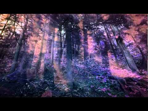Through The Scarlet Forever de Axamenta Letra y Video