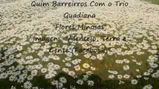 """""""Quim Barreiros  e o Trio Guadiana"""" - Flores Mimosas"""