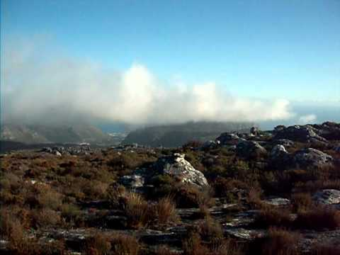 Table Mountain Scenery 2 – David and Colleen Hungerford's Honeymoon in South Africa
