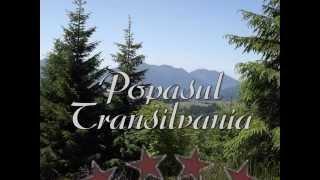 Popasul Transilvania ... un peisaj de basm!