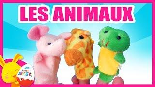 Apprendre les animaux - Marionnettes pour enfants -Titounis