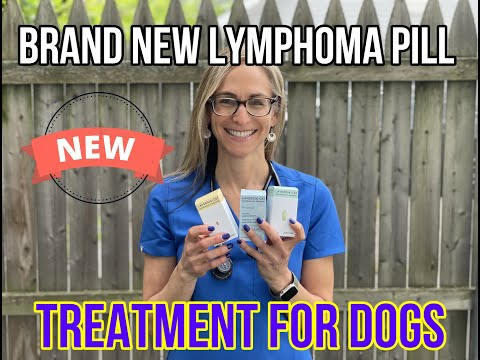 Brand New Lymphoma Pill Treatment For Dogs, Is It A Game Changer? VLOG 134