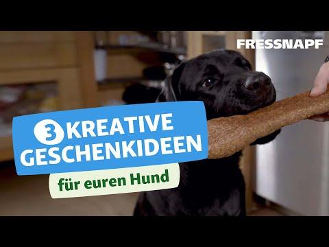 DIY - 3 tolle Geschenkideen für euren Hund