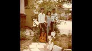 Dixie-Laurance Ferdinands - D'ELF 1970 - Sitting On The Fence feat Dennis Ferdinands