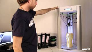 Delta WASP 3D printer / Resurrection System