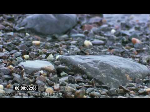 Full HD Güzel Doğa 3 Video Clips Seti