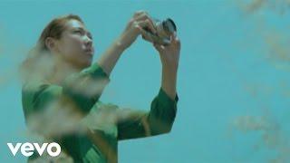 王若琳 Joanna Wang - Wild World