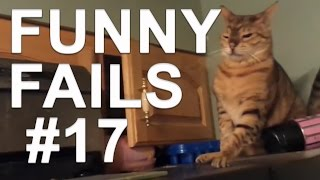Funny Cats with sound effects - Funny cats compilation