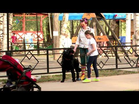 В Сыктывкаре члены отряда «ЛизаАлерт» и сотрудники МВД провели эксперимент