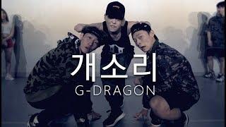 권지용G-Dragon - 개소리BULLSHIT / Choreography . HANNA