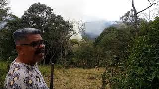 Candomblé e a preservação do meio ambiente/ candomblé e a mãe natureza/
