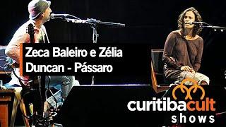 Zeca Baleiro e Zélia Duncan - Pássaro - Show em Curitiba