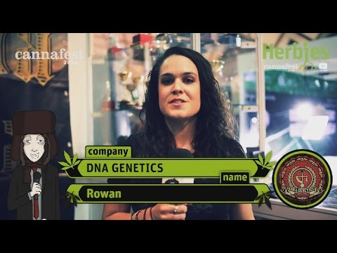 DNA Genetics @ Cannafest 2014 Prague