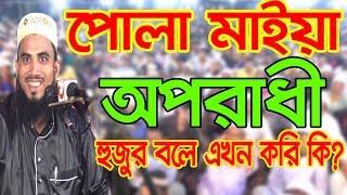 পোলা মাইয়া অপরাধী হুজুর একি বলে? Golam Rabbani oporadhi waz Bangla Waz 2018