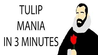 Tulip Mania   3 Minute History