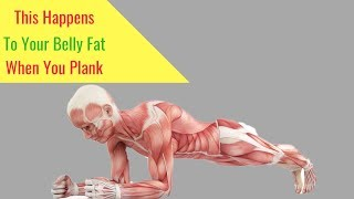 Watch When you plank this happens to your stomach fat