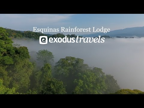 Esquinas Rainforest Lodge with Exodus Travels