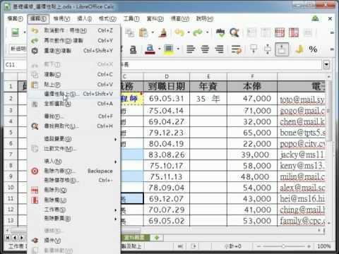 LibreOffice Calc 教學_選擇性貼格式