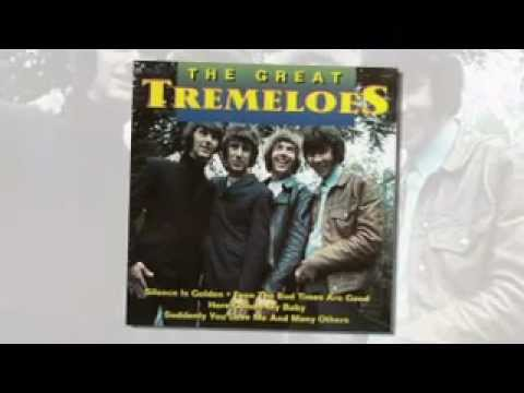 the-tremeloes-you-flatop47