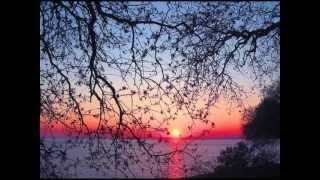 Parla piu piano (rock version) - NIKOS STAVROU (DEMO)