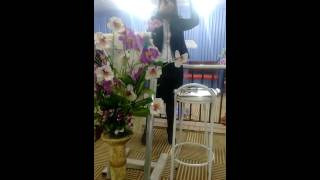 Sai do Porão / Cantora Cleide Machado em Mesquita