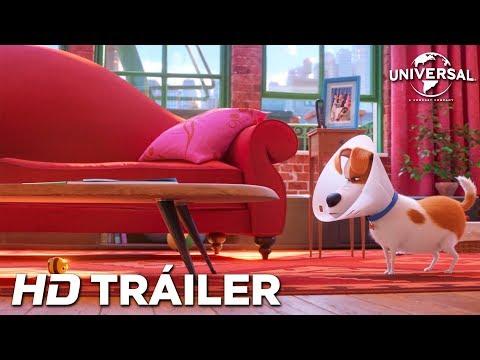 MASCOTAS 2 - Tráiler 5 (Universal Pictures) - HD