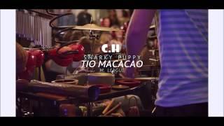 Snarky Puppy - Tio Macaco - Banda Musical