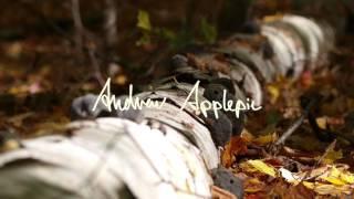 Andrew Applepie - Look At It